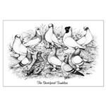 Shortface Tumbler Pigeons Large Poster
