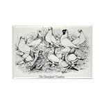 Shortface Tumbler Pigeons Rectangle Magnet (10 pac