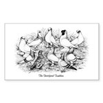 Shortface Tumbler Pigeons Rectangle Sticker
