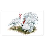 Beltsville White Turkey Rectangle Sticker 10 pk)