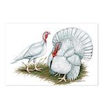 Beltsville White Turkey Postcards (Package of 8)