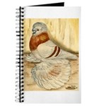 Mealy English Trumpeter Pigeo Journal