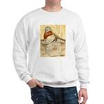 Mealy English Trumpeter Pigeo Sweatshirt