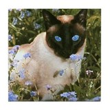 Tile Coaster - Seal Point Siamese