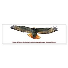 World & Wildlife Hawk Bumper Bumper Sticker