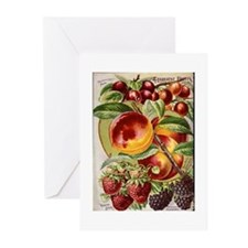 4 Farliest Fruits Greeting Cards (Pk of 20)