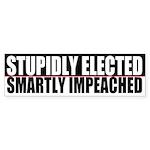 Stupidly Bumper Sticker