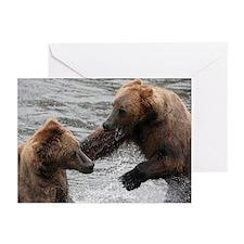 Bear Spat - Greeting Cards (Pk of 10)