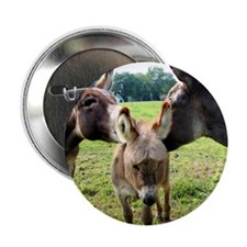 """Miniature Donkey Family 2.25"""" Button (100 pack)"""