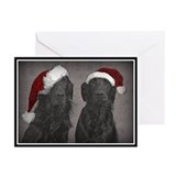 Flat-Coat Christmas Greeting Cards (Pk of 20)
