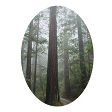 Redwood Forest Oval Ornament