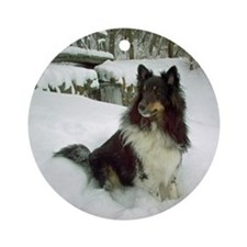 Winter Falls Sheltie Ornament (Round)