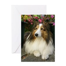 Happy Birthday Cutie Greeting Card