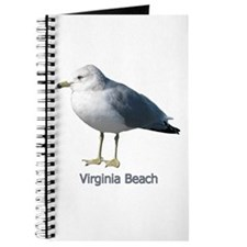 Virginia Beach Gull Journal