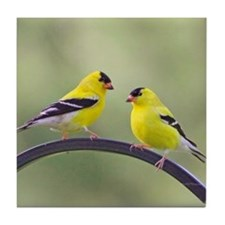 Goldfinches Tile Coaster