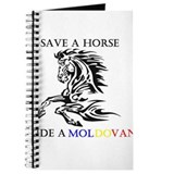 Save a horse Ride a Moldovan Journal