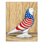 Patriotic West Pigeon2 Small Poster