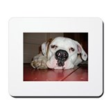 American Bulldog Mousepad