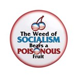 "The Wead of Socialism 3.5"" Button"