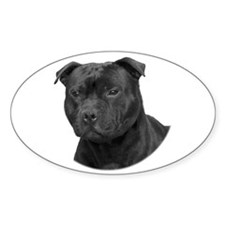 Stafford head Oval Decal