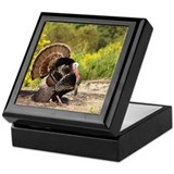 Wild Turkey Gobbler Keepsake Box