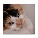 Calico Cat Tile Coaster