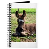 Sleepy Donkey Baby Journal