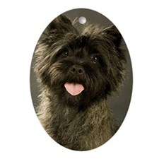 Unique Terrier Oval Ornament