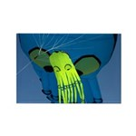Octopus For Two Rectangle Magnet (10 pack)