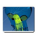 Octopus For Two Mousepad