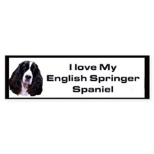 English Springer Spaniel Bumper Bumper Stickers