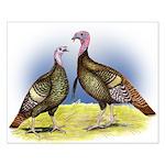 Rio Grande Wild Turkeys Small Poster