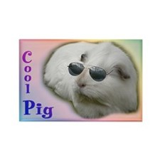 Cool Guinea Pig Rectangle Magnet