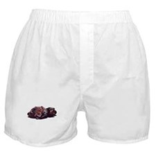 Nicky Hayden Boxer Shorts