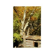 Fall Colors Log Cabin Rectangle Magnet
