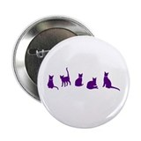 "Cats Cats Cats! 2.25"" Button"