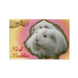 Guinea Pig Buddies Rectangle Magnet