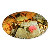 Fall Colors Red Leaf Oval Decal