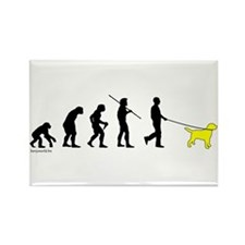 Yellow Lab Evolution Rectangle Magnet (10 pack)