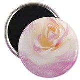 Romantic Pink Blush Rose Magnet