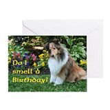 Sheltie dog Single Card