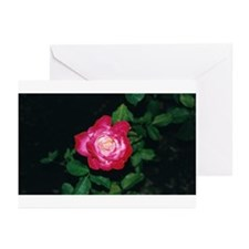 Red Red Rose Greeting Cards (Pk of 10)