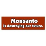 Monsanto is destroying our future Bumper Car Sticker