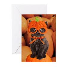 Pumpkin Kitten Halloween Greeting Cards (Pk of 20)