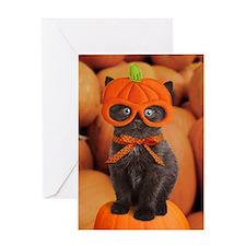 Pumpkin Kitten Halloween Greeting Card