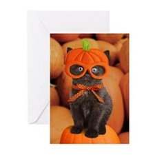 Pumpkin Kitten Halloween Greeting Cards (Pk of 10)