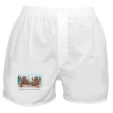 WineToons Boxer Shorts