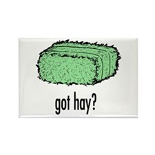 Got Hay? Rectangle Magnet (10 pack)