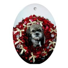 Stormy Christmas Oval Ornament