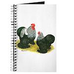 Birchen Cochins Journal
